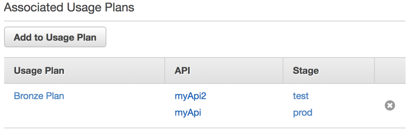 API key after added to a Usage Plan on API Gateway Console